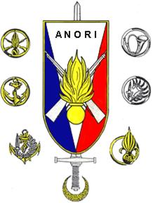insigne anori.png
